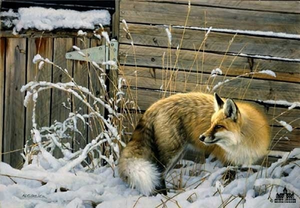 Nancy Glazier Shed Door Fox