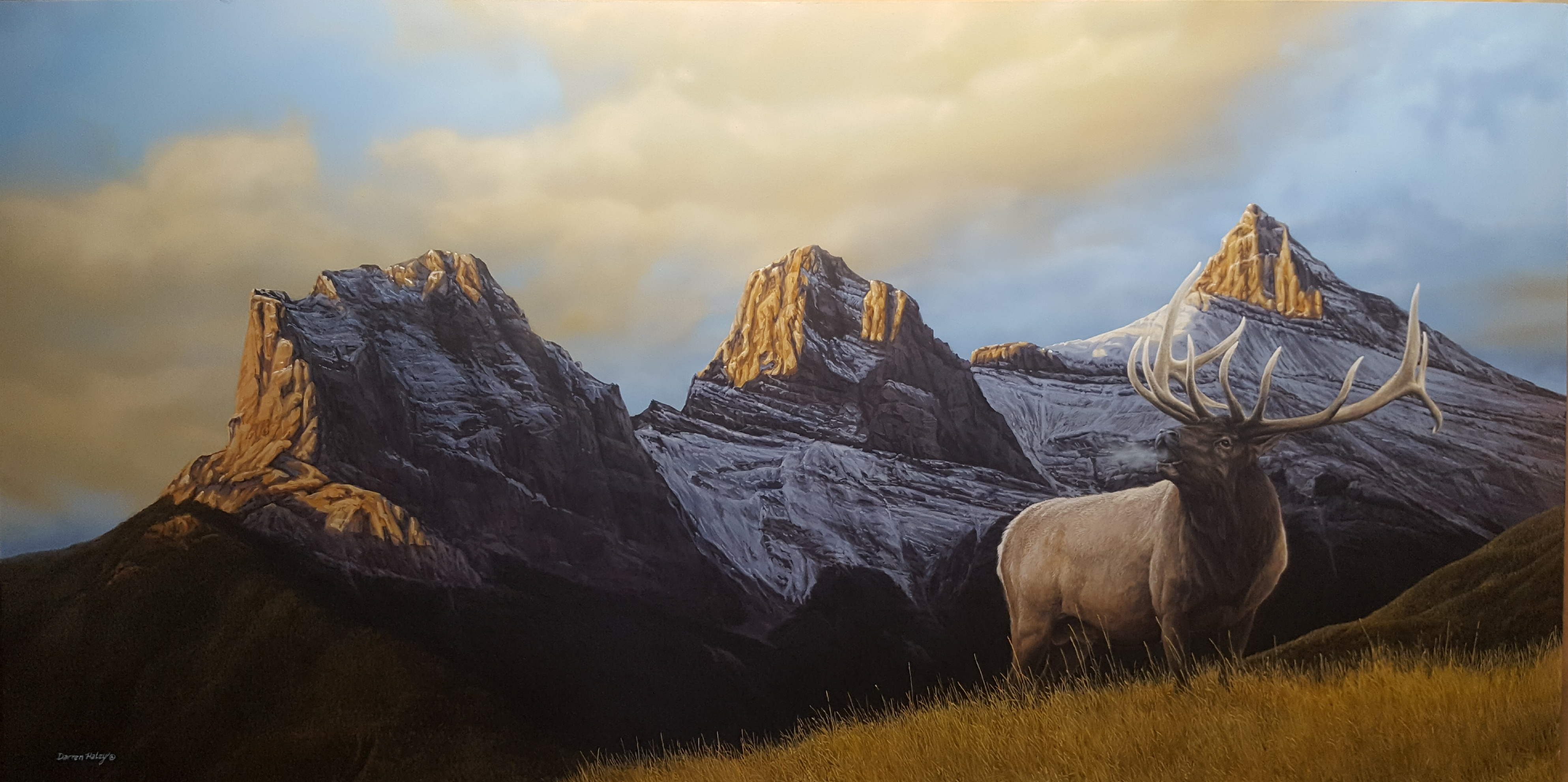 Darren Haley Three Sisters Elk