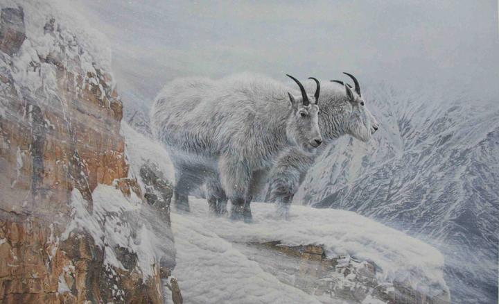 http://www.artcountrycanada.com/images/parker-ron-winter's-fury-crop.jpg