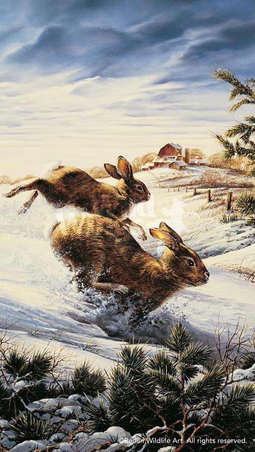 Terry Redlin Hightailing
