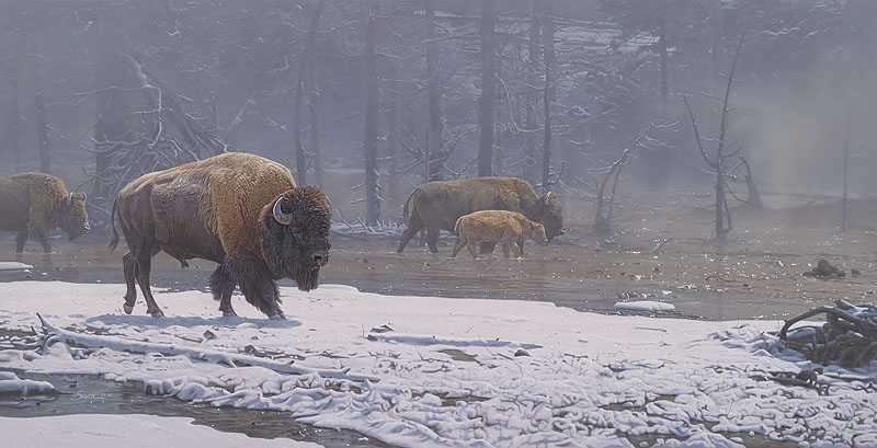 Daniel Smith Ethereal Mist Bison