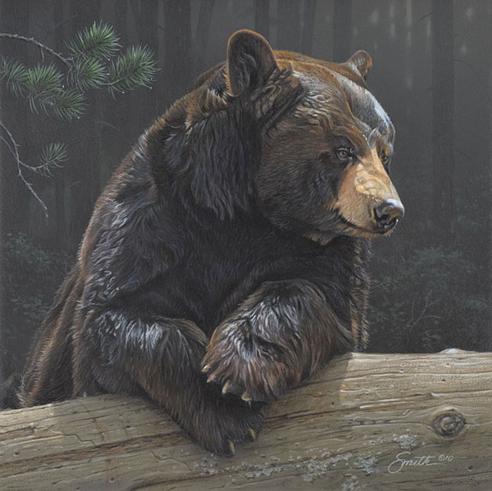 Art Country Canada - DANIEL SMITH Logging On BLACK BEAR ...