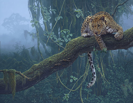 Leopard Daniel Smith Art Print 10x8