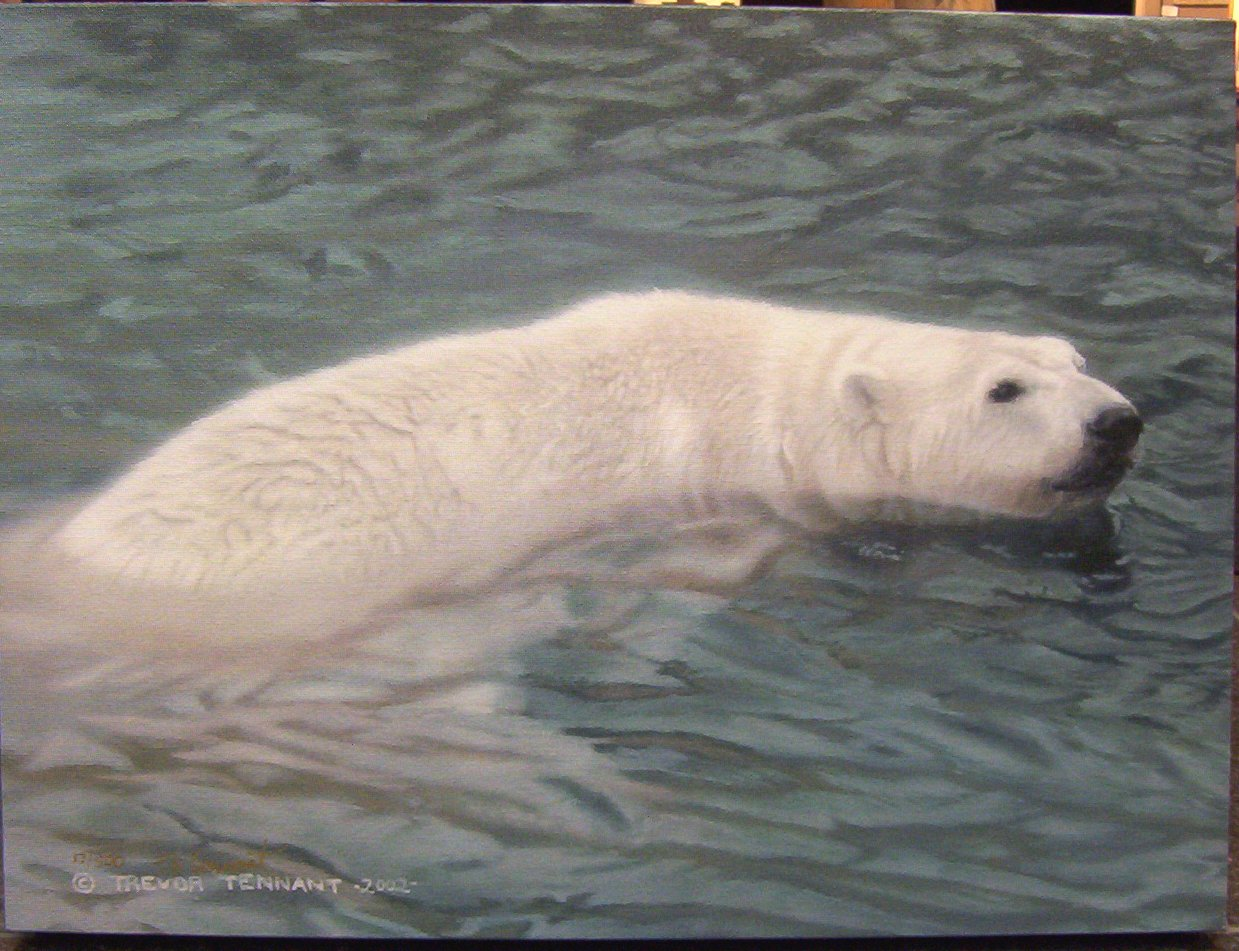 Trevor Tennant Arctic Spa Polar Bear