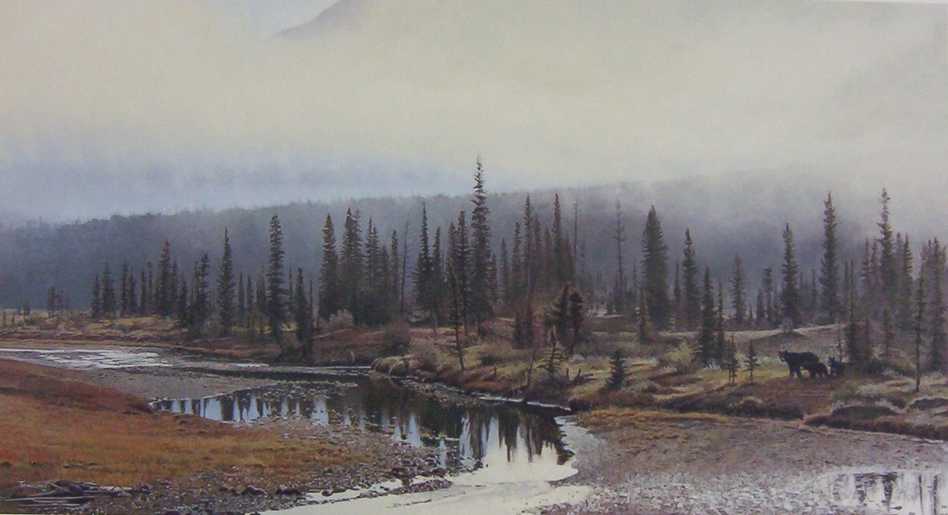 Brent Townsend - Misty Morning